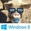 windows-pig.png